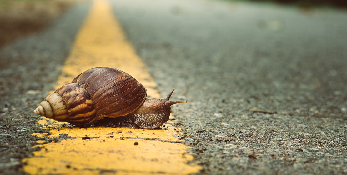 Slow content : une vision alternative de la production de contenus